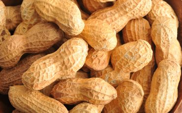 Austin Allergy - Guidelines for Introducing Peanuts to Infants